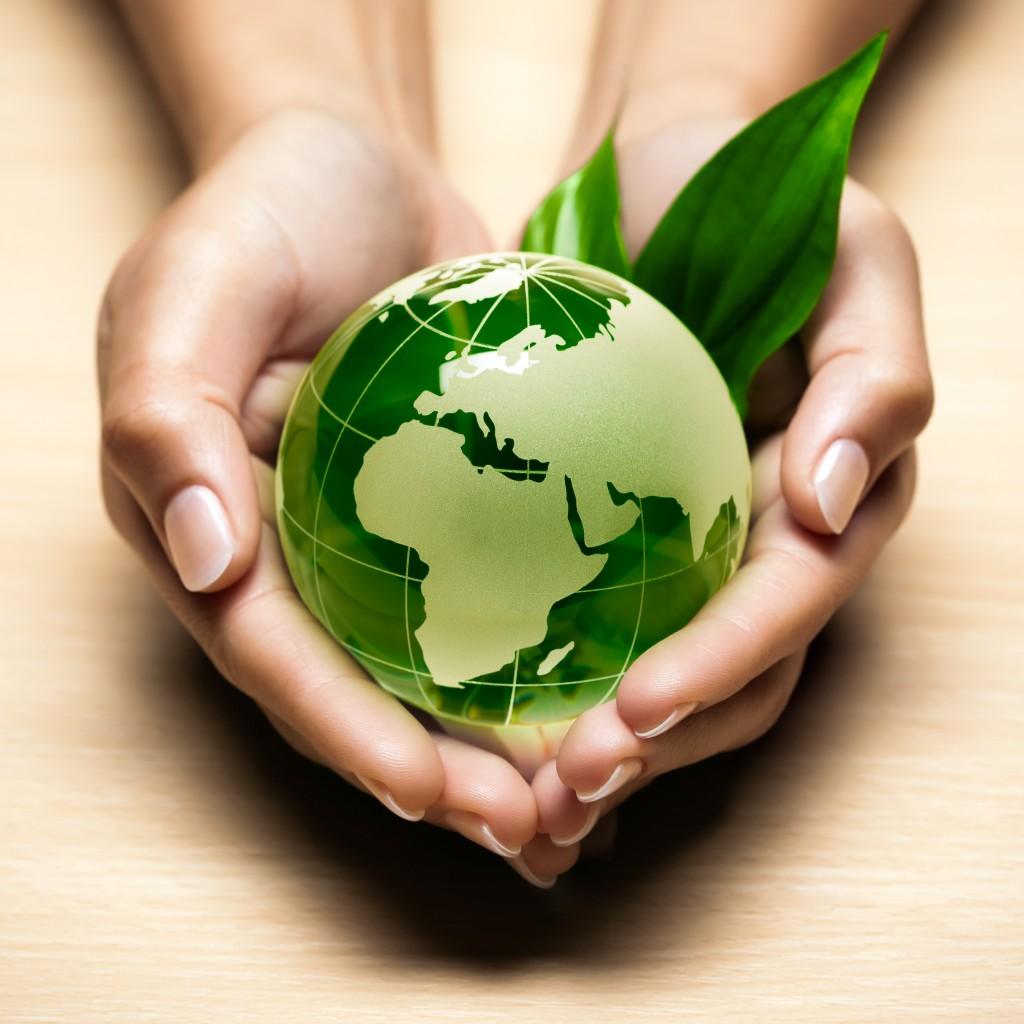 Ecologie planète
